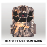Black Flash Cameras