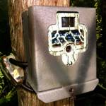Game Camera Metal Security Box - Browning Range OPS XV, Command OPS