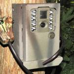 Bear Box for Moultrie A-Series Game Cameras