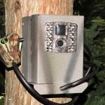 Bear Box for Moultrie M-40 M-50 Series Game Cameras