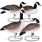 Hardcore Full Body Canada Goose Sentry Decoys - 4 Pack