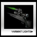 Varmint Lights