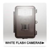 Flash Cameras