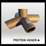 Protein Heads